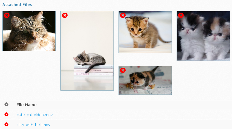Image Gallery for Item Full of Cats